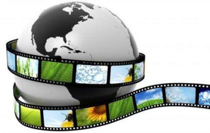 Обучение по программе «Видеомонтаж в программе Movie Maker»